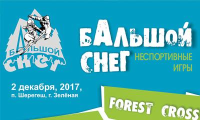горнолыжный фестиваль БАльшой снег
